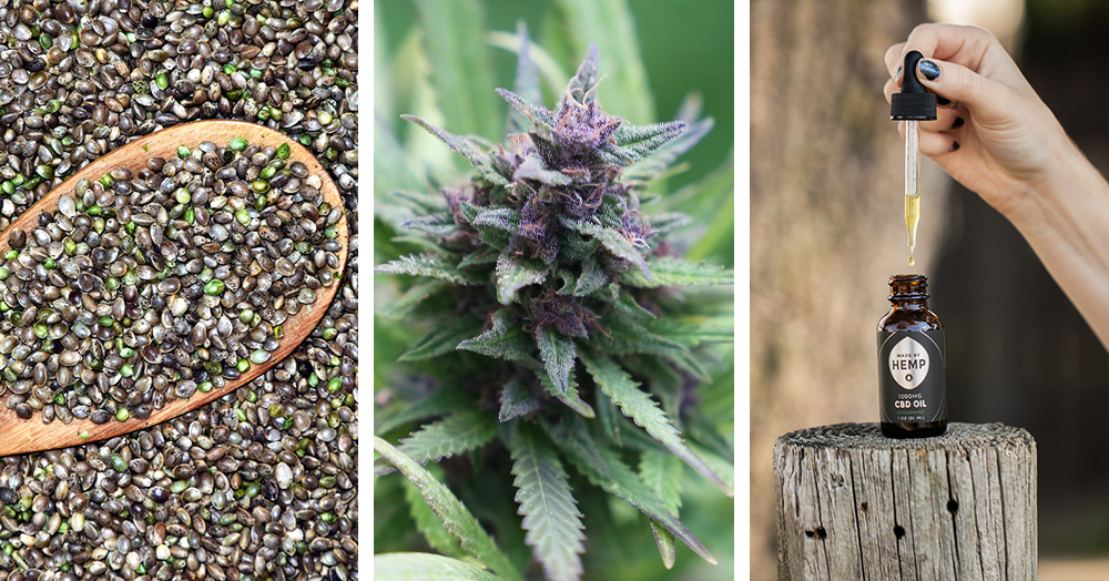 cannabis in various forms