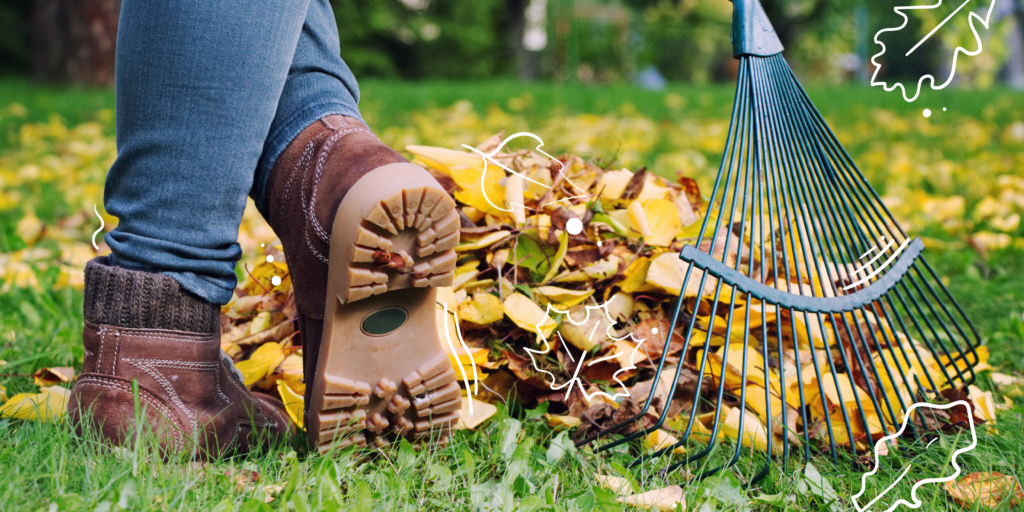 fall lawn care powell river